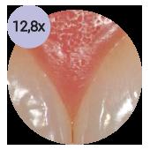 стоматологический операционный микроскоп global с увеличением 128х