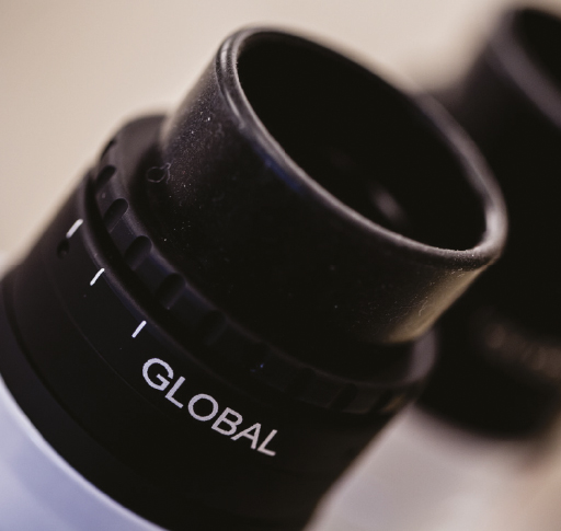 бинокуляры микроскоп global